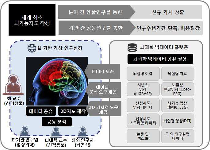 Brain-Function Map Scenario