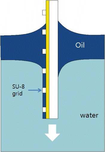 Dipping법에 의한 화소 oil 채우기 공정의 모식도