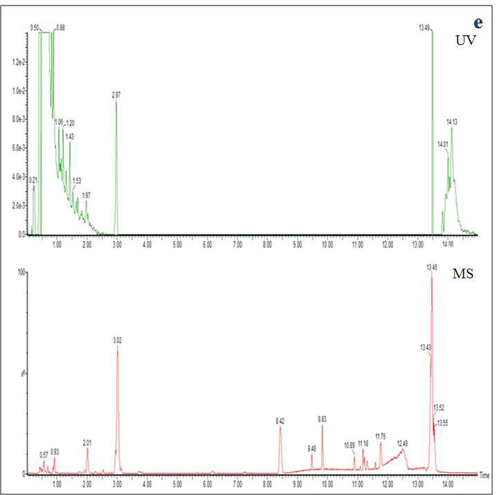 Chromatogram obtained by UPLC-TOF-MS in negative ionization mode from 70% ethanol extracts of raw deoduck (Codonopsis lanceolata )[a], high pressure extraction fermented deoduck[b], 3rd steaming and fermented deoduck[c], 5th steaming and fermented deoduck[d], 5th steaming deoduck[e]