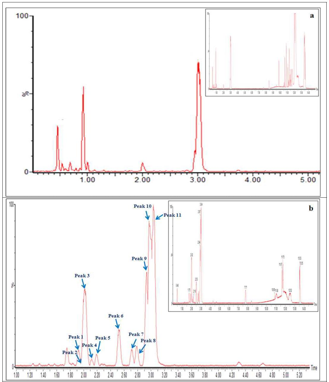 Representative UPLC-Q-TOF/MS chromatograms of 70% ethanol extraction of raw deoduck(Codonopsis lanceolata )[a], 5th steaming and fermented deoduck[b].