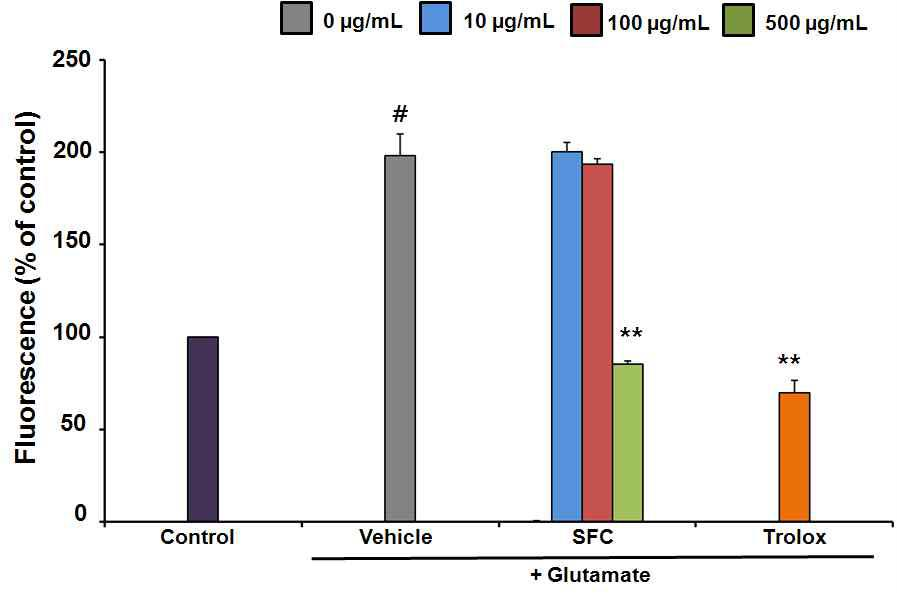 The effect of SFC on glutamate-induced ROS generation. Results are expressed as a percentage of values obtained for control cells