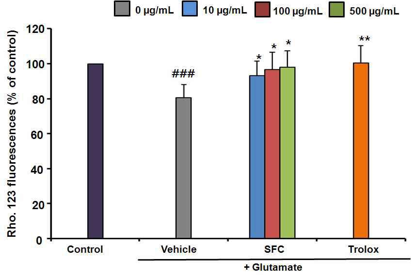 The effect of SFC on glutamate-induced disruption of mitochondrial membrane potential. Results are expressed as a percentage of values obtained for control cells.