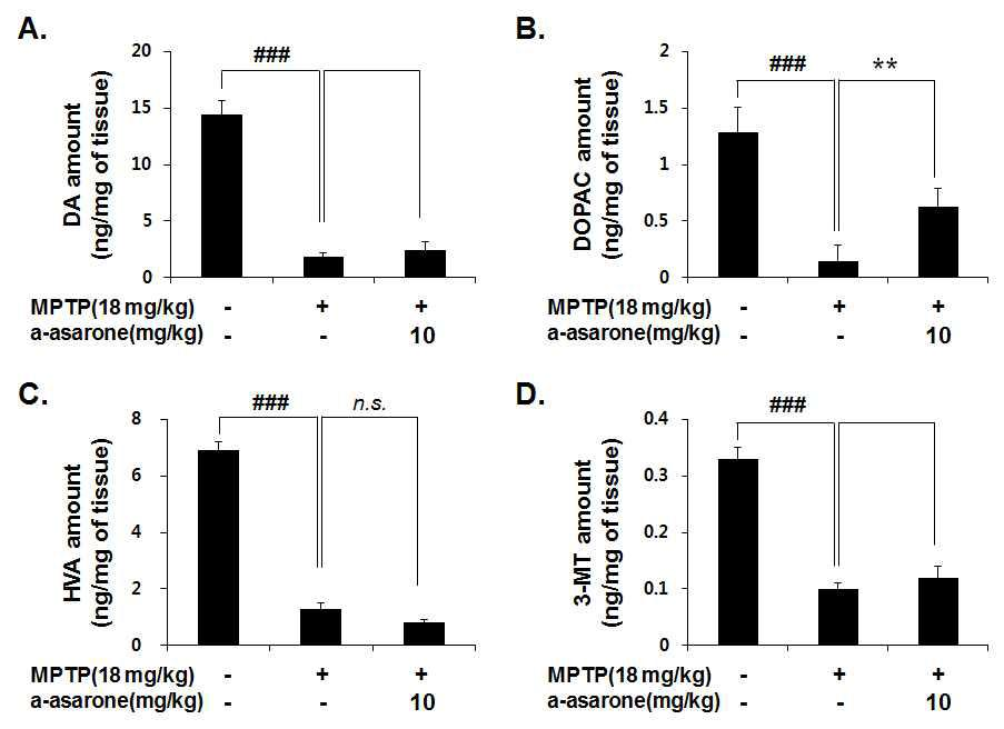 Effect of α-asarone on neurotransmitter in MPTP-intoxicated mouse