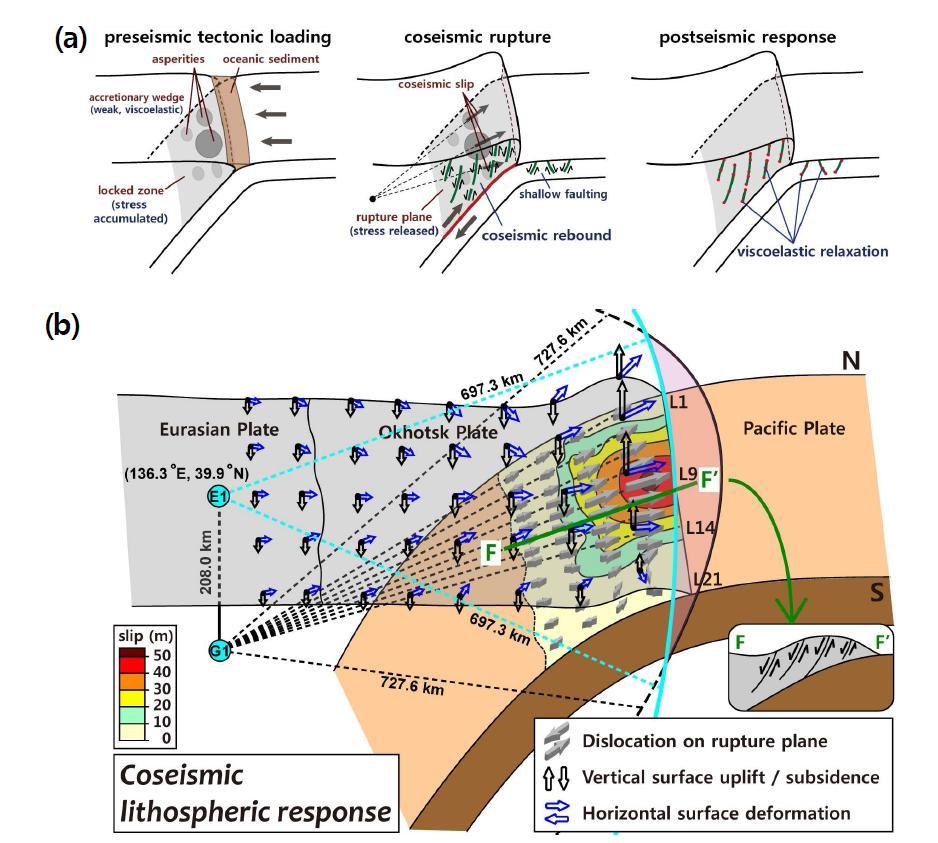 (a) 동일본 대지진이 발생한 지역에서의 지진 전 지구조 변화, 지진의 파열과 지진 후 변형 에 대한 암권 반응의 도식적 모델. (b) 대지진 발생시 암권의 반발 모델. 큰 융기는 스플레이 단층이 발달한 큰 슬립이 발생한 슬랩 경계 위의 해저면에서 관찰되었다. 큰 침하는 내륙과 큰 슬립이 발생한 지역 사이의 전호 지역에서 관찰되었다.