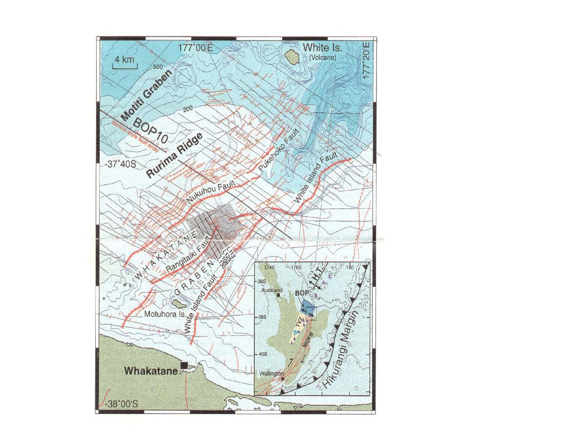 Fig. 2-2. Interpratation map of geologic structure of the Whakatane Graben,