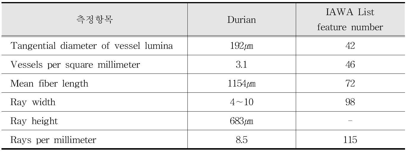 IAWA 기준에 따른 Durian 수종의 해부학적 특성