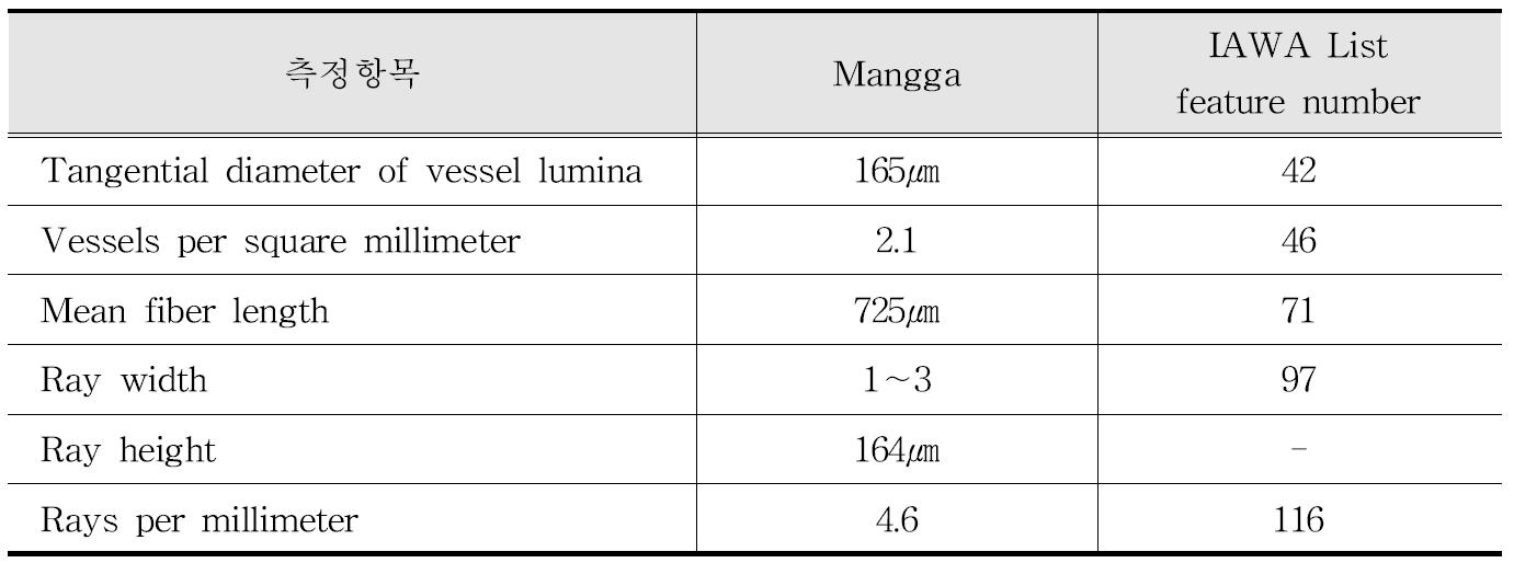 IAWA 기준에 따른 Mangga 수종의 해부학적 특성