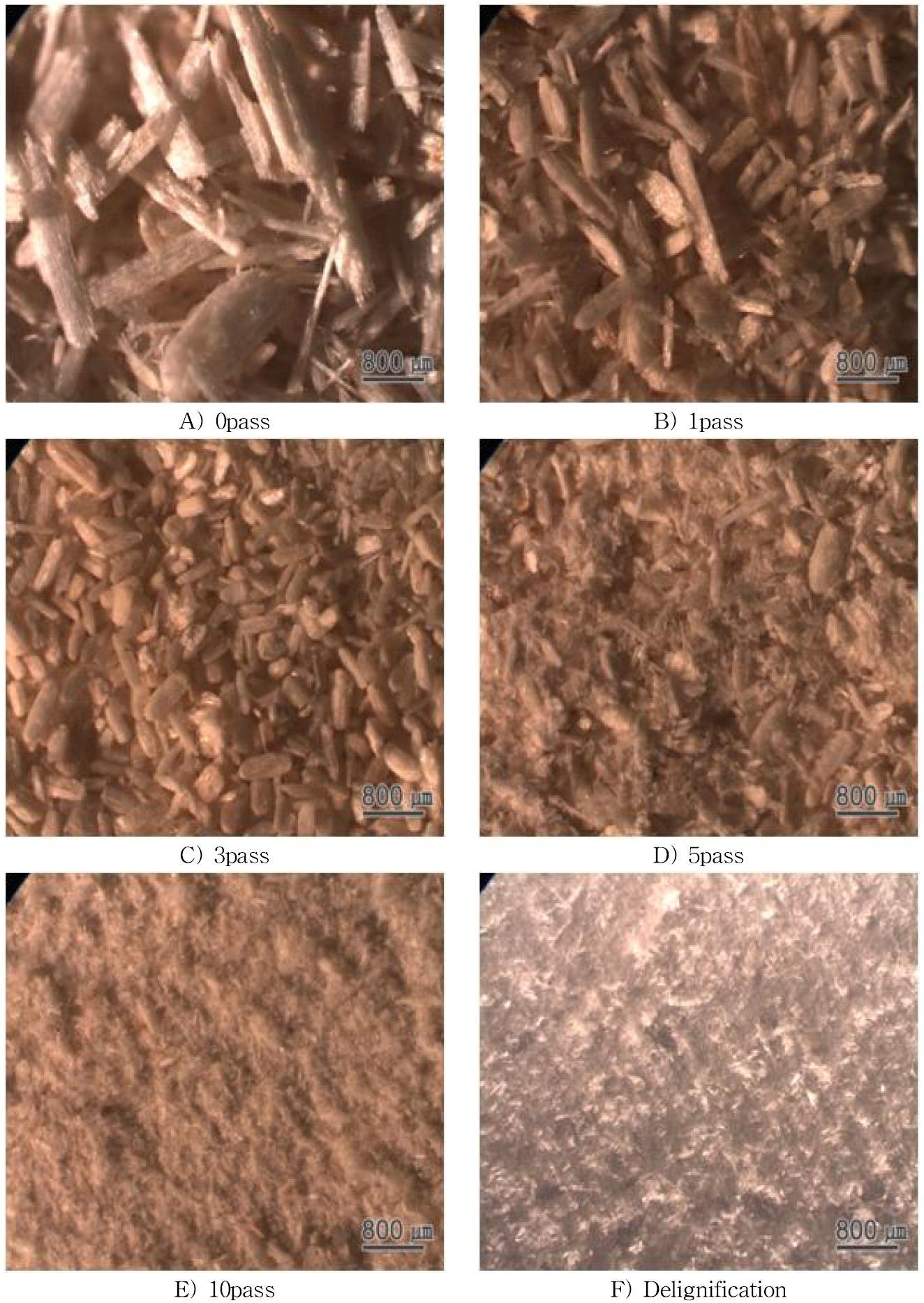 Albizia 조분쇄 시료의 실체현미경 사진.