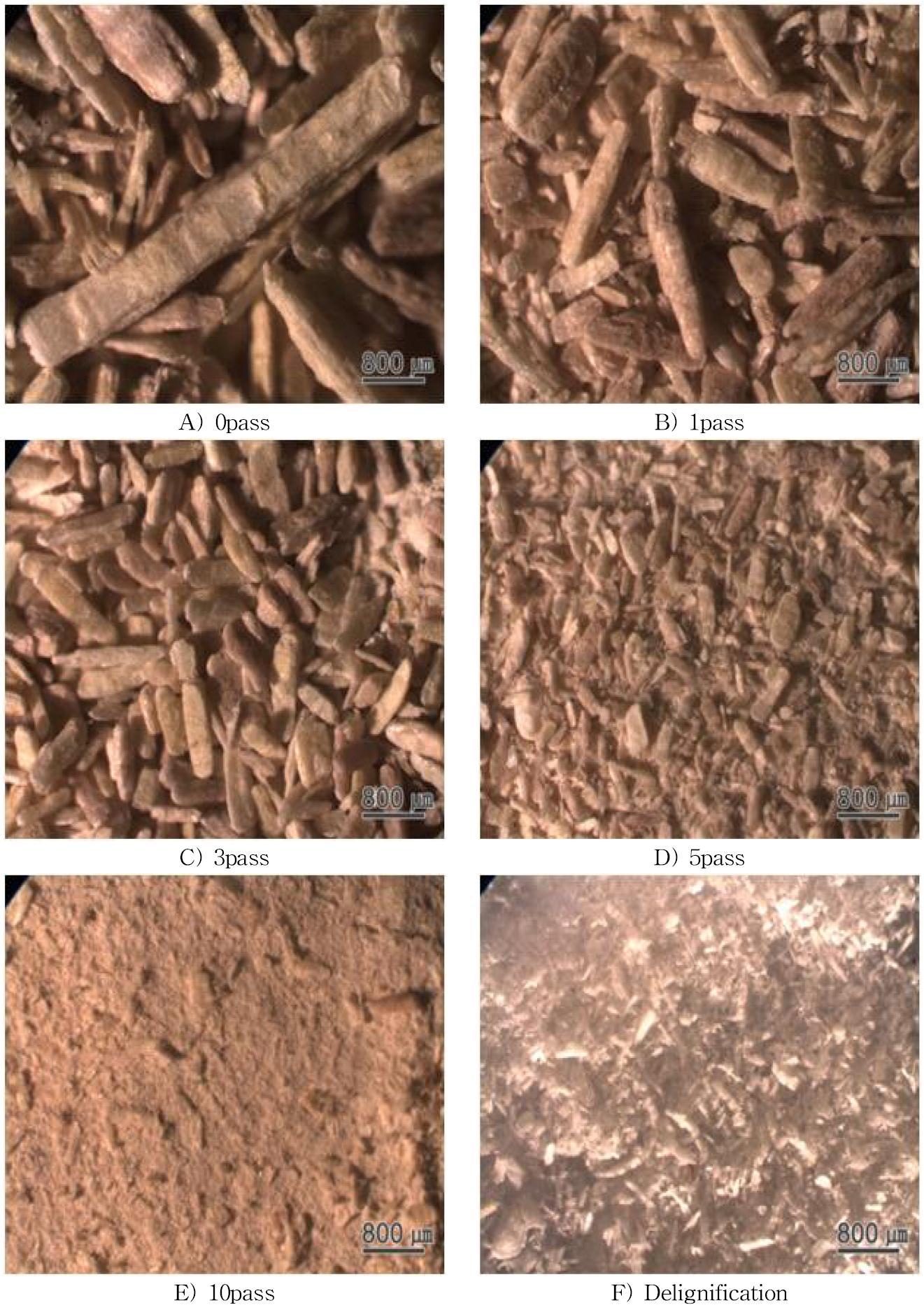 Gmelina 조분쇄 시료의 실체현미경 사진.