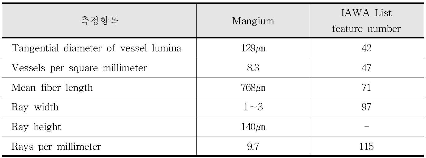 IAWA 기준에 따른 Mangium 수종의 해부학적 특성
