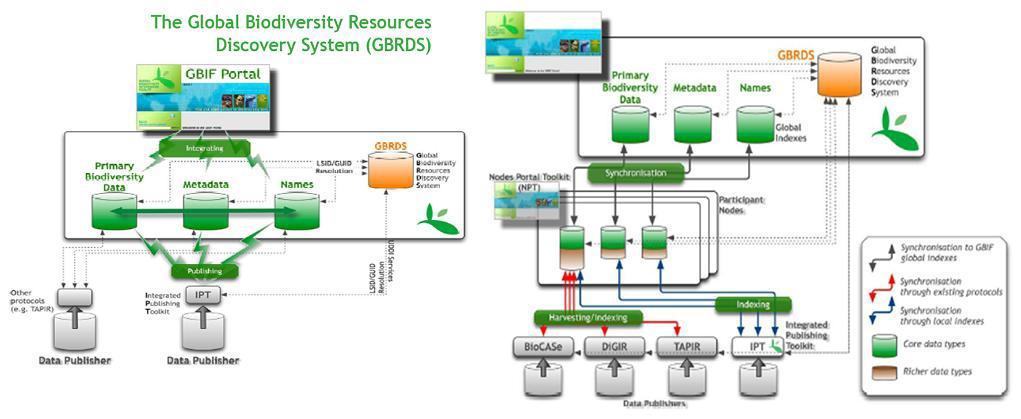 Data global services capable through GBIF