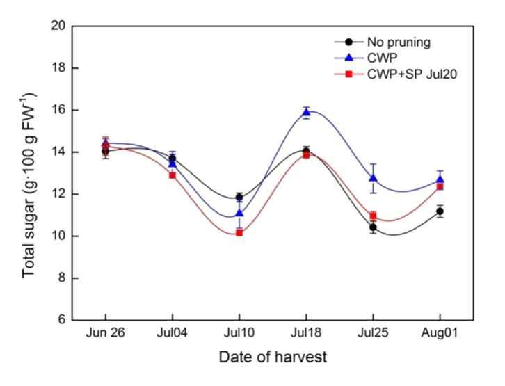Change in total sugar content of 'Misty' southern highbush blueberry over the 2015 harvest season