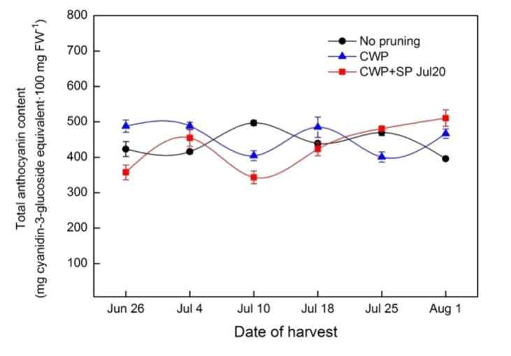 Change in total anthocyanin content of 'Misty' southern highbush blueberry over the 2015 harvest season