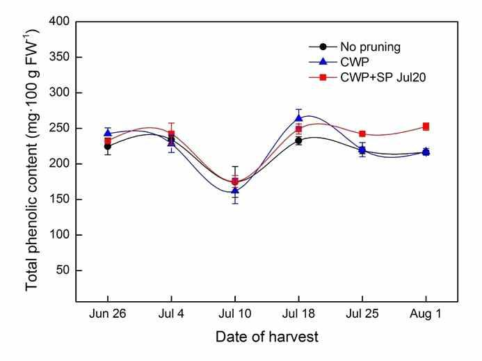 Change in total phenolic content of 'Misty' southern highbush blueberry over the 2015 harvest season