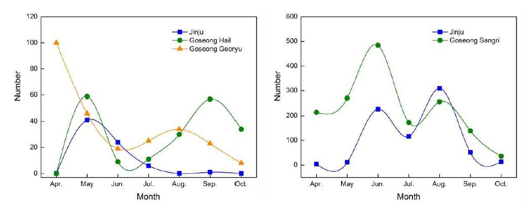 Change of occurrence of thrips in the orchards of southern highbush blueberry