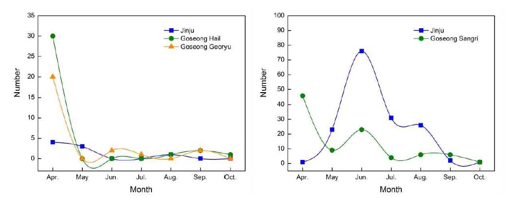 Change of occurrence of aphid in the orchards of southern highbush blueberry