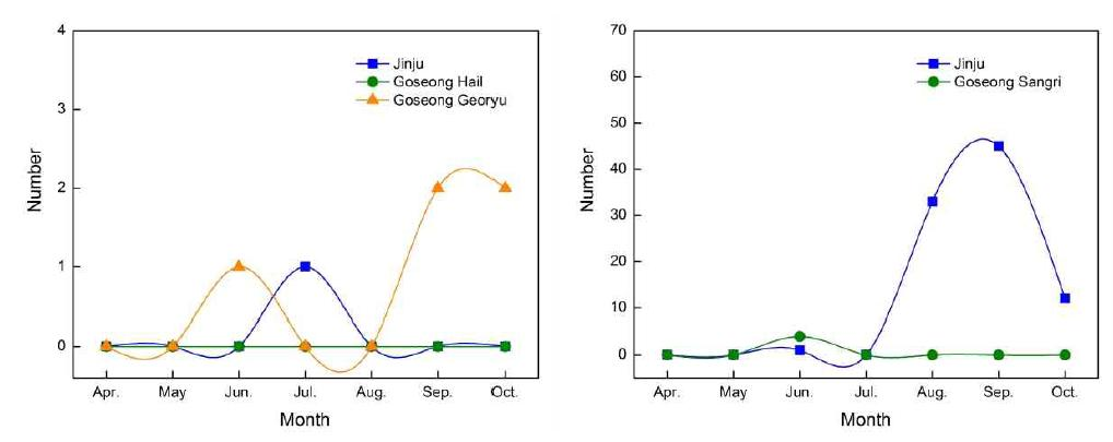 Change of occurrence of jassids in the orchards of southern highbush blueberry