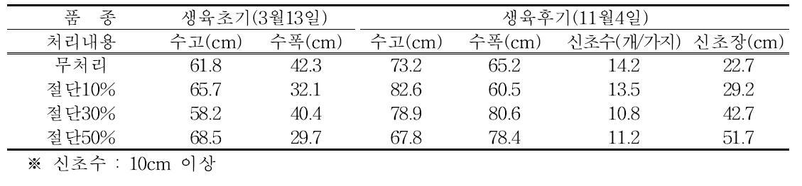 동계 절단전정 생육초기와 후기의 수체 생육(2년생 티프블루, 2013년)