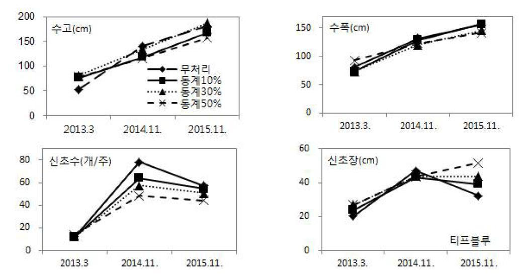 동계 솎음전정 정도에 따른 연차간 생육 변화(티프블루)