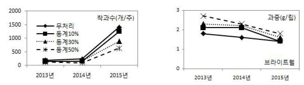 동계 솎음전정 정도에 따른 연차간 착과수 및 과중 변화(브라이트웰)