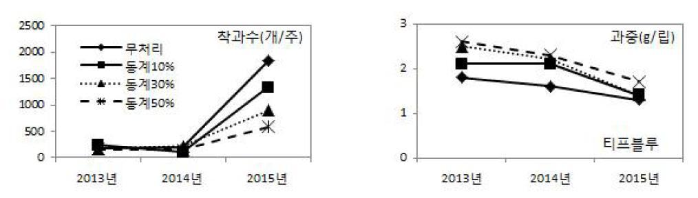 동계 솎음전정 정도에 따른 연차간 착과수 및 과중 변화(티프블루)
