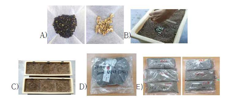 GM누에 및 잠사류 토양환경 평가 실험
