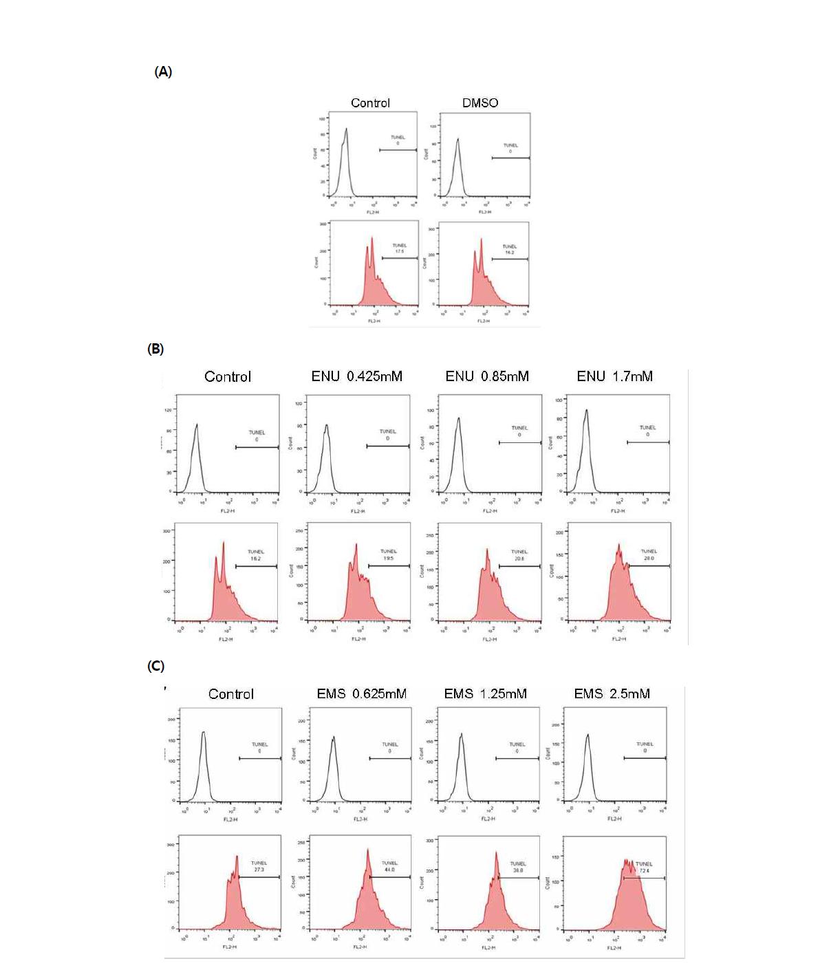 TUNEL assay를 이용한 대조 물질에 대한 수컷 생식줄기세포 독성