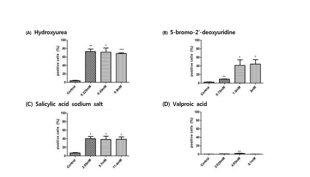 수컷 생식줄기세포에 Annexin-V를 이용한 수컷 생식줄기세포 독성