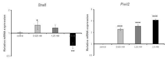qRT-PCR을 이용한 ethyl methanesulfonate(EMS)에 대한 수컷 생식줄기세포 독성