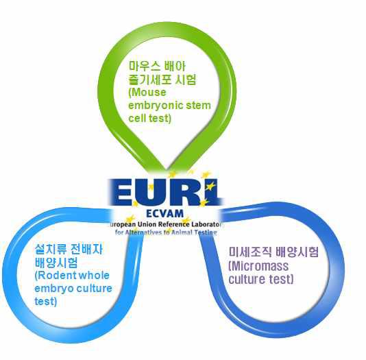 유럽동물대체시험법검증센터(ECVAM) 생식발생독성 평가를 위한 동물대체시험법 개발