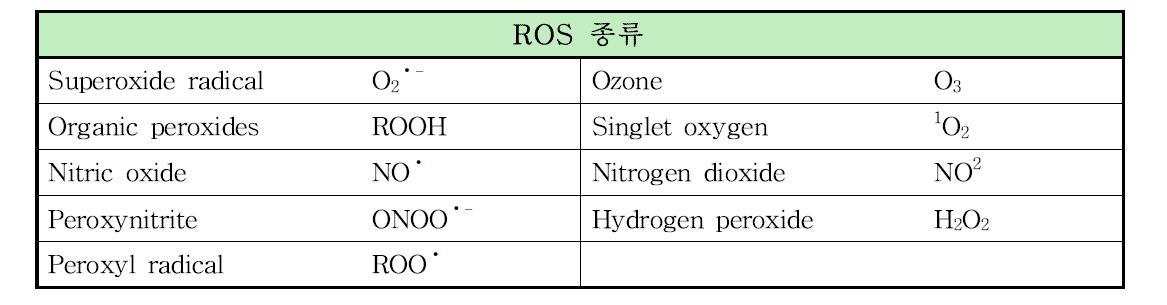 ROS의 종류(Salman, K. A. & Ashraf, S., 2013)