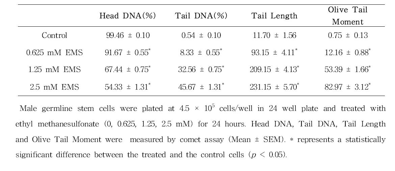 Comet assay를 이용한 ethyl methanesulfonate(EMS)에 대한 수컷 생식줄기세포 독성