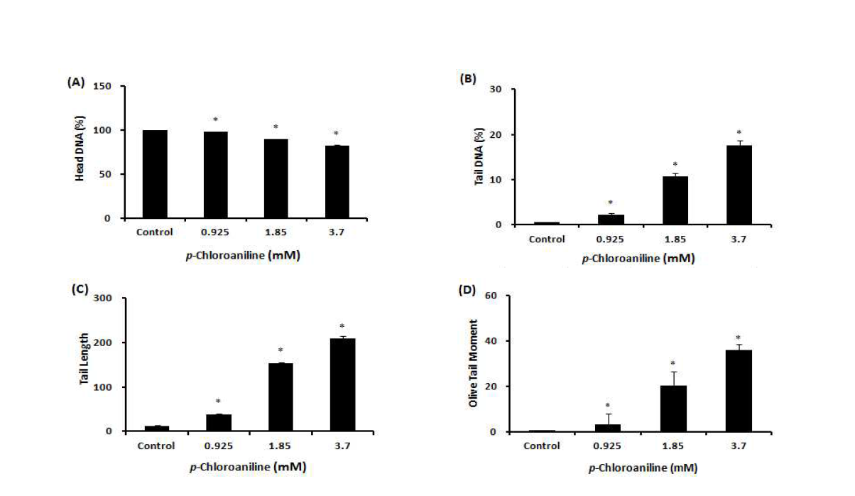 Comet assay를 이용한 ?-chloroaniline(PCA)에 대한 수컷 생식줄기세포 독성