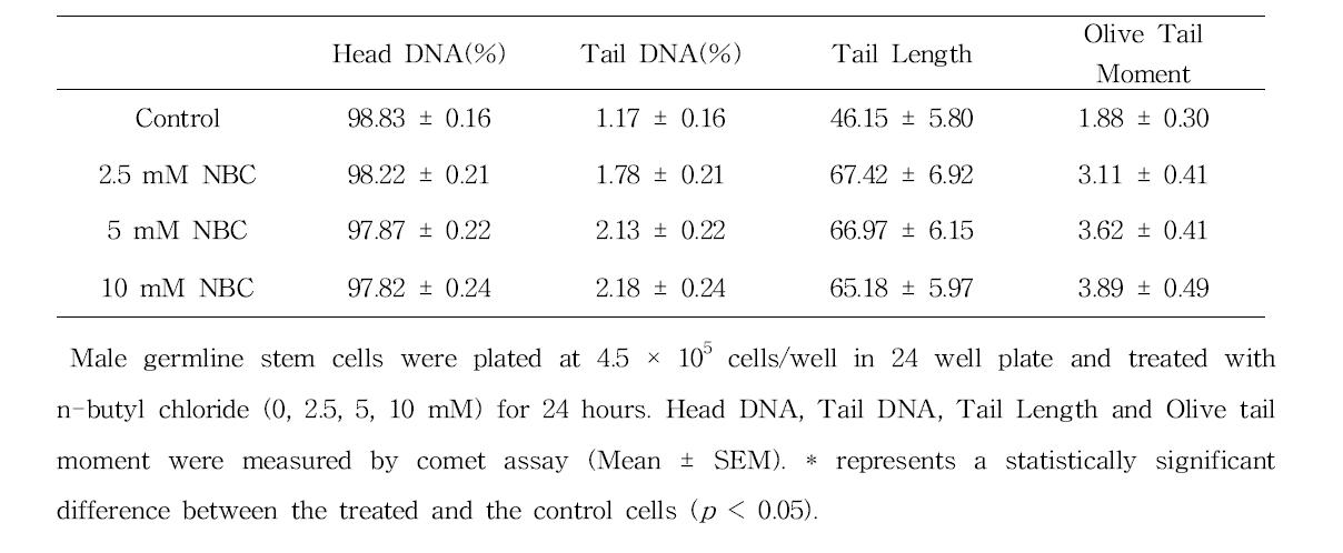 Comet assay를 이용한 n-butyl chloride(NBC)에 대한 수컷 생식줄기세포 독성