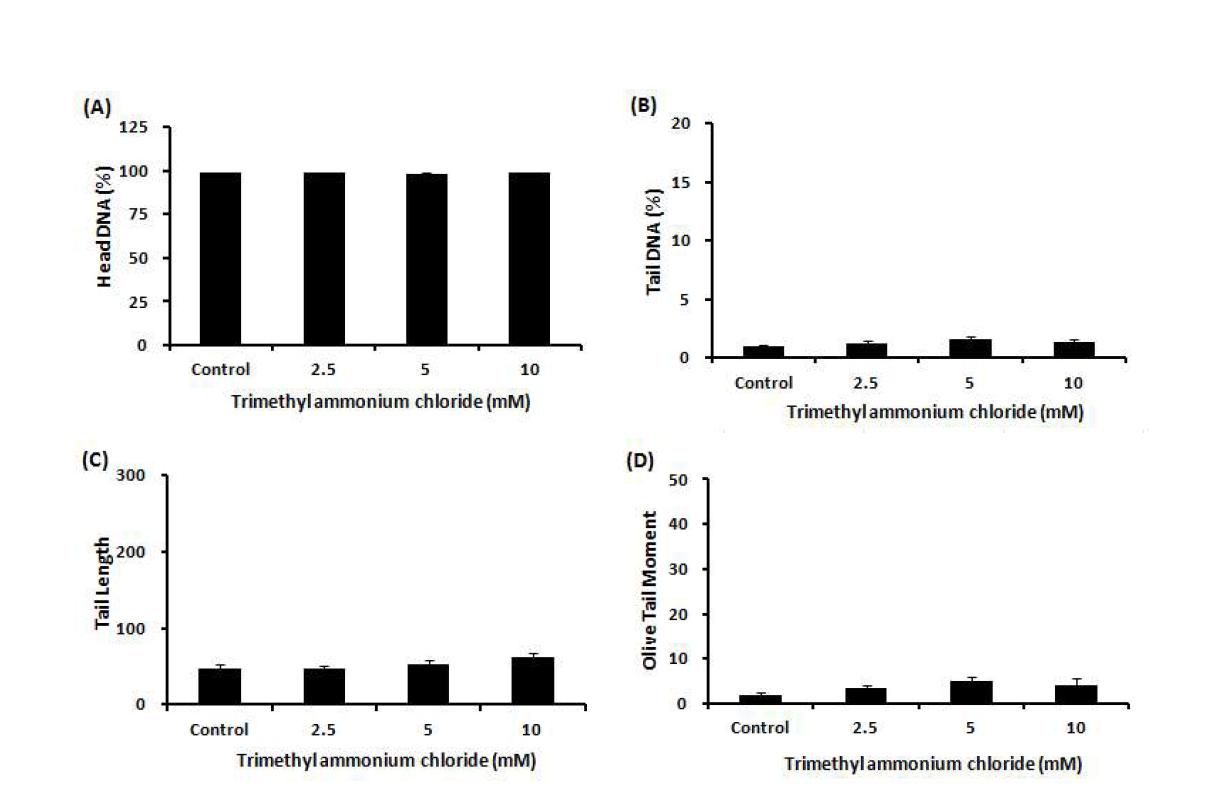Comet assay를 이용한 trimethyl ammonium chloride(TAC)에 대한 수컷 생식줄기세포 독성