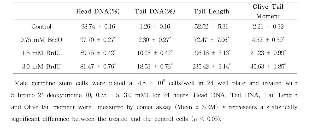 Comet assay를 이용한 5-bromo-2'-dexoyuridine(BrdU)에 대한 수컷 생식줄기세포 독성