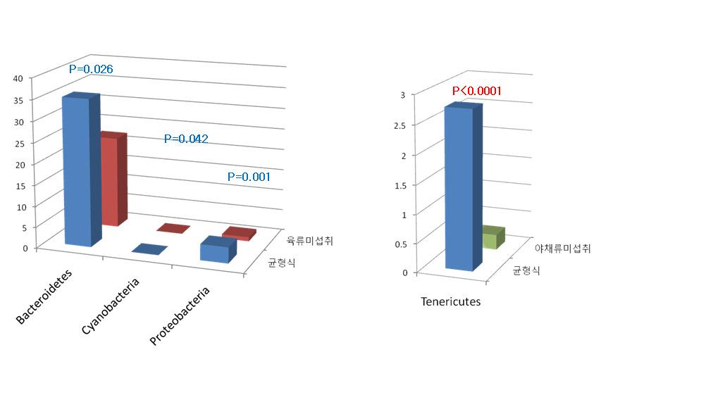 Phylum level에서 식이별 장내 미생물 군집구성