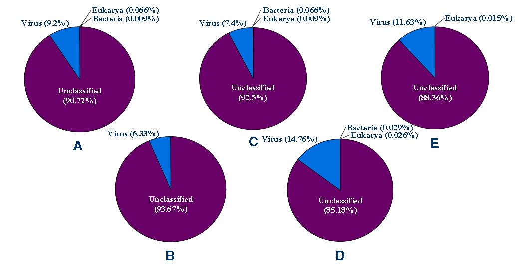 BLASTx-analysis를 통해 Genbank database와 비교 분석 결과.