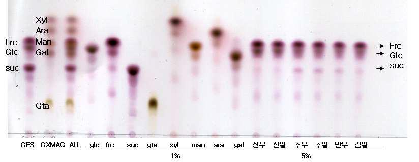 배 품종별 배시료 TLC 분석 결과