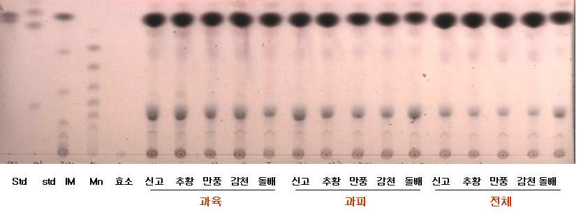 배 품종별 식이섬유 효소 반응 결과