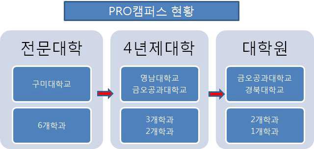삼성전자 PRO캠퍼스 사례