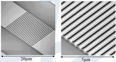 Grating Coupler structure 의 SEM 사진
