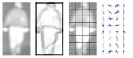 Histogram of Oriented Gradient