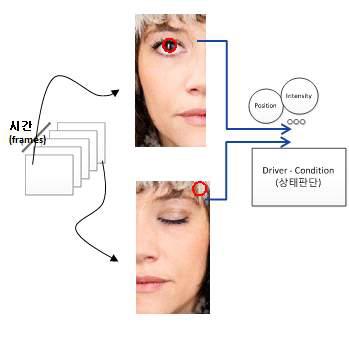 눈동자 정보를 이용한 운전자 상태 판단