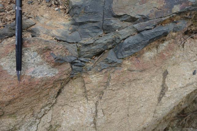 장산단층 상반에 발달된 완사습곡의 북서측 날개부 노두사진.