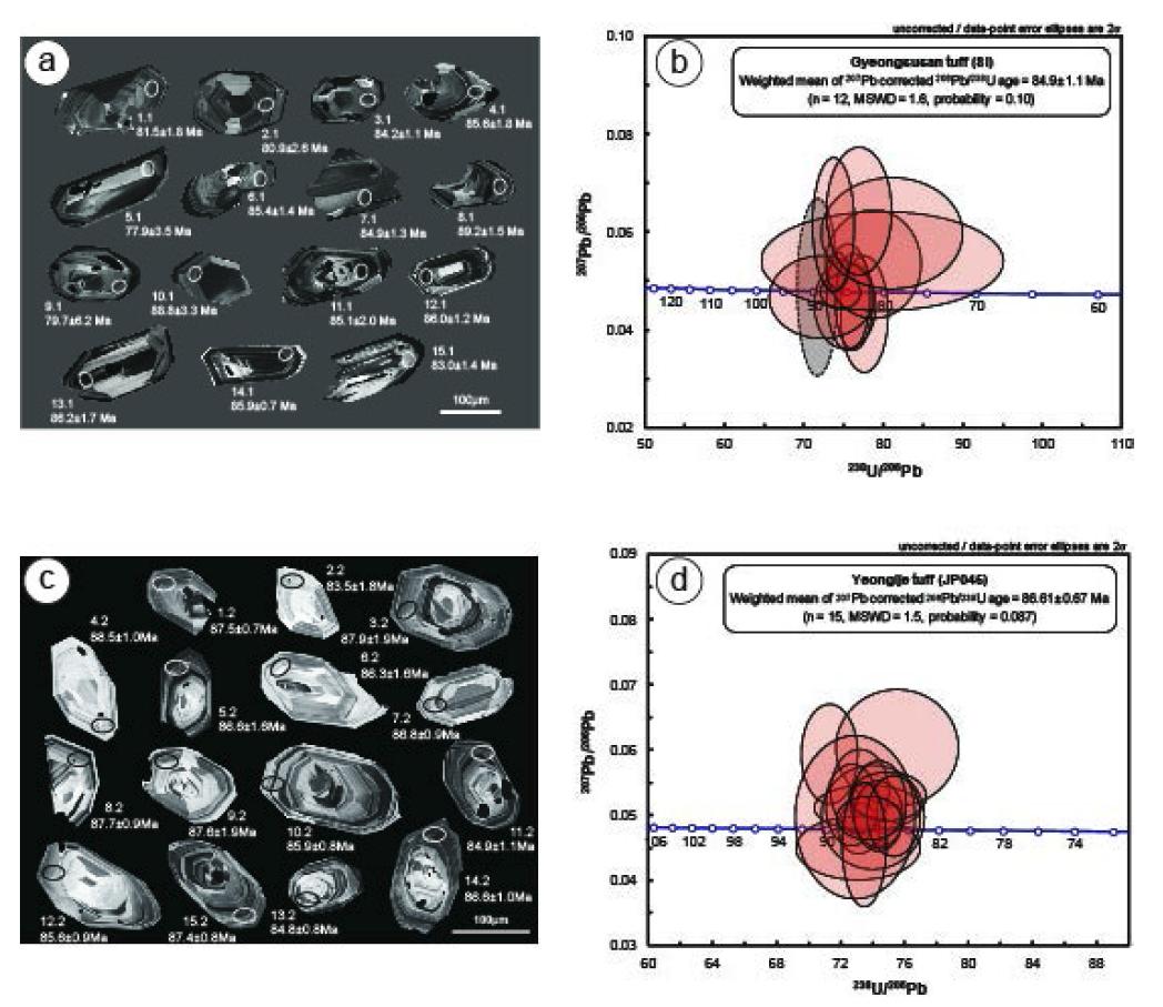 선운산화산암 저어콘의 CL 영상과 SHRIMP 연대측정.