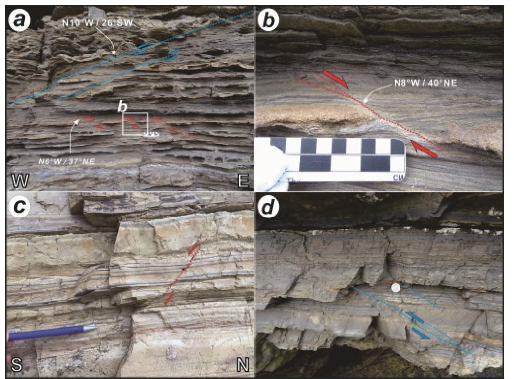 연구지역에서 관찰되는 퇴적동시성 단층구조들.