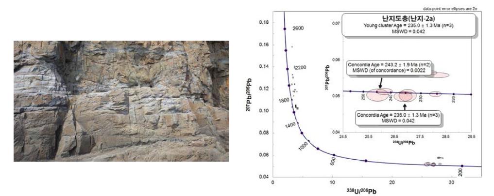 사층리가 발달하는 사암 누층의 난지도층과 LA-ICP U-Pb 절대연령 측정.