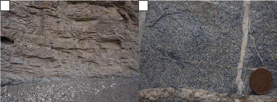 (a) Helanshan 남부 단면에 노출된 Abuqiehai층에서 관찰된 역단층. (b) Abuqiehai층에서 관찰된 어란상 석회암.