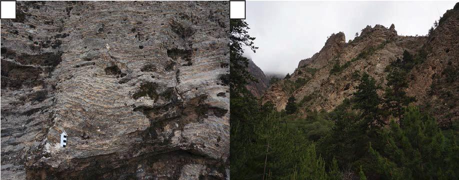 (a) Abuqiehai층에 주로 발달한 석회암과 셰일이 교호하는 암상. (b) Abuqiehai층 상부에 놓인 암층으로 오르도비스기 지층일 가능성이 있다
